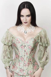 Vintage Goth Blakely Victorian Inspired Corset with Attached Sleeve