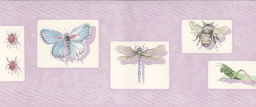 Lavender Bugs Wallpaper Border - Insects Decor Wall Border Roll