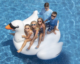 Swan Family Pool Floats - Set of 4